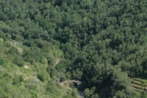 Apricale (IM), vallone del rio Merdanzo