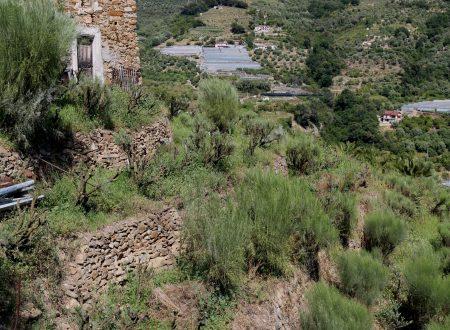 San Biagio della Cima (IM) – rustico in Via Nostra Signora dei Dolori