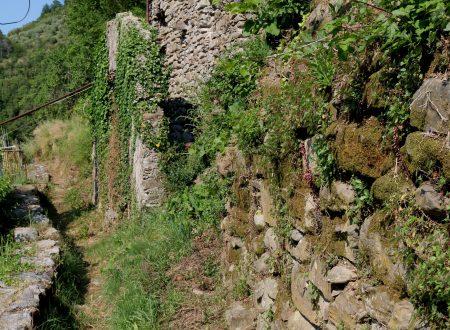 Isolabona (IM) – un rustico vicino al paese