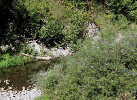 Olivetta San Michele (IM) – il torrente Bevera nei pressi della Località Bossaré