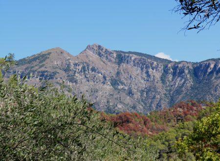 Olivetta San Michele (IM), Località Bossaré: una vista sulle montagne