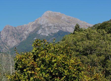 Isolabona (IM), Località Bunda: una vista sul Monte Toraggio